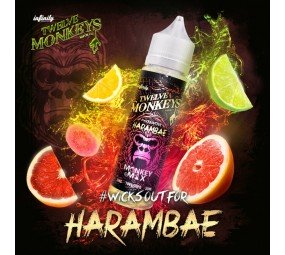 twelve-monkeys-harambae-50ml-diy-liquid