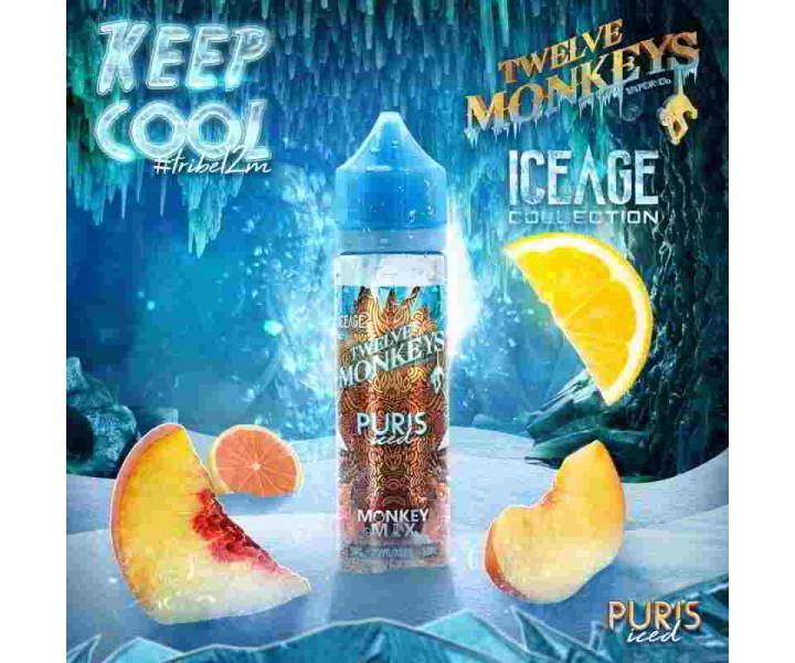 Twelve-Monkeys-Ice-Age-Puris-ICED-DIY-Liquid