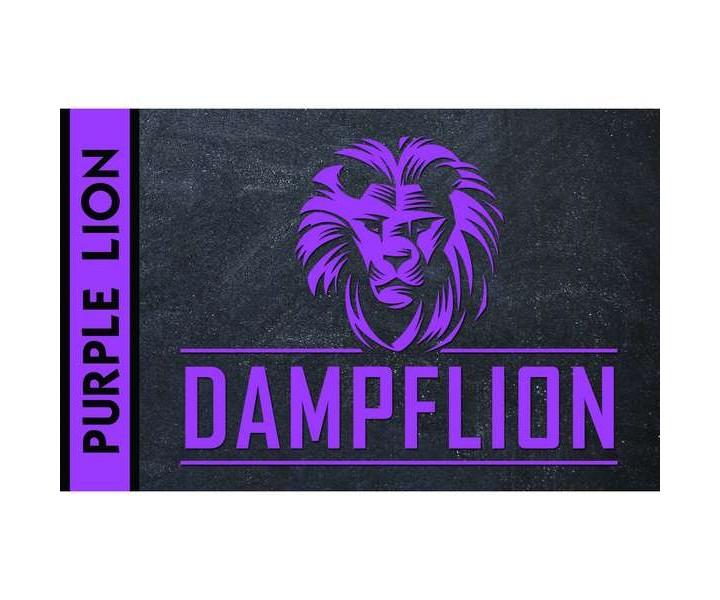 PurpleLion_DampfLion_Aroma
