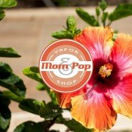 Mom-&-Pop-Aroma-Shredded-Hawaiian
