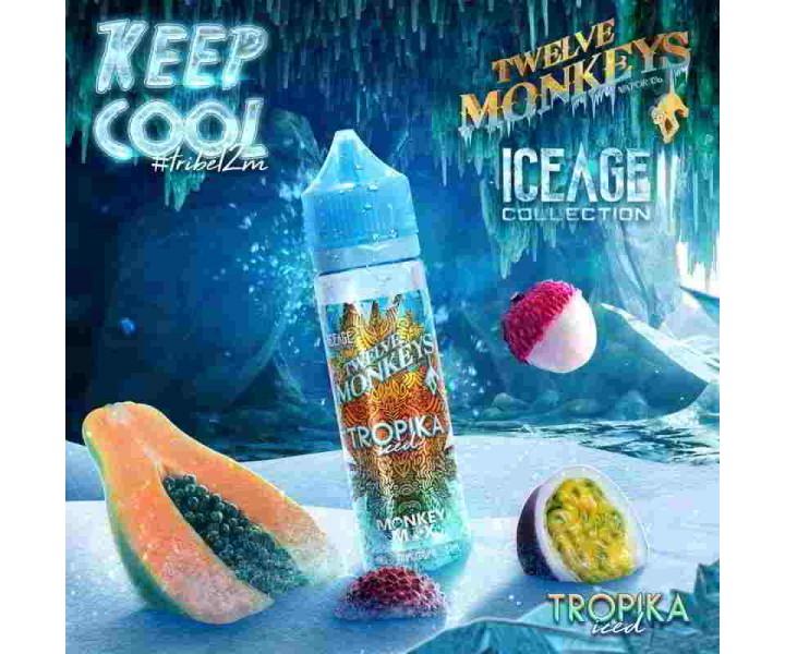 Twelve-Monkeys-Ice-Age-Tropika-ICED