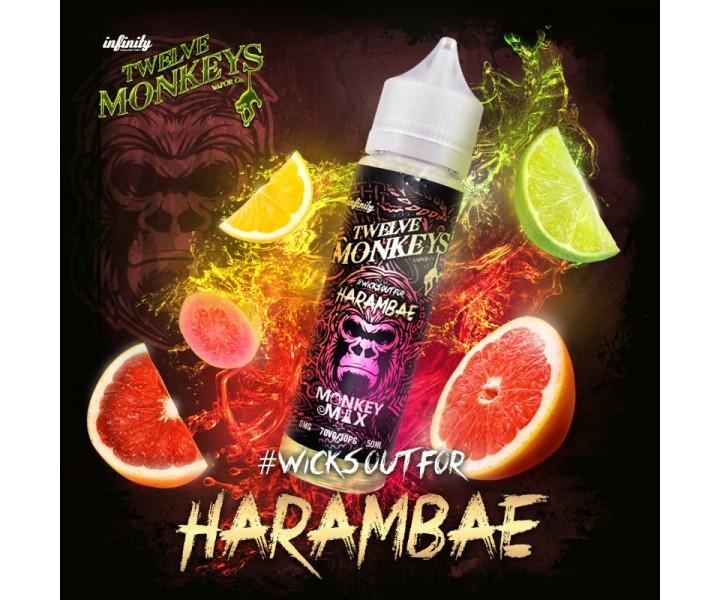 twelve-monkeys-harambae-50ml-diy-liquid