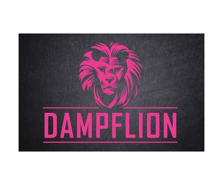 PinkLion_DampfLion_Aroma